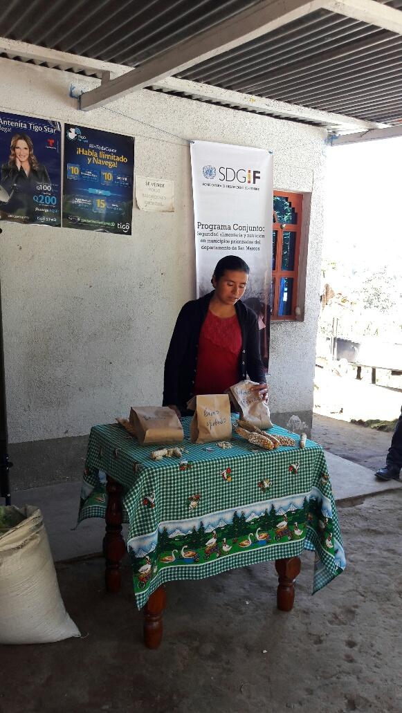 Maíz Guatemala