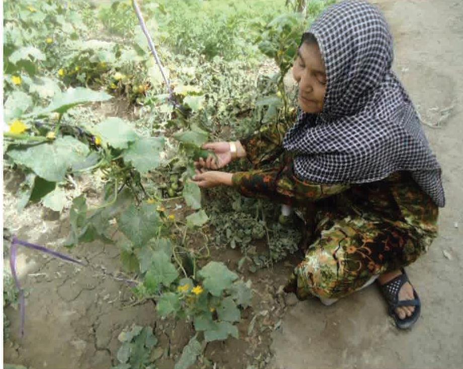 Beneficiaria atendiendo su jardín, establecido con la ayuda del programa
