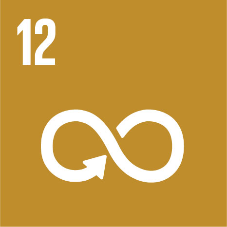 Goal 12: Responsible consumption, production