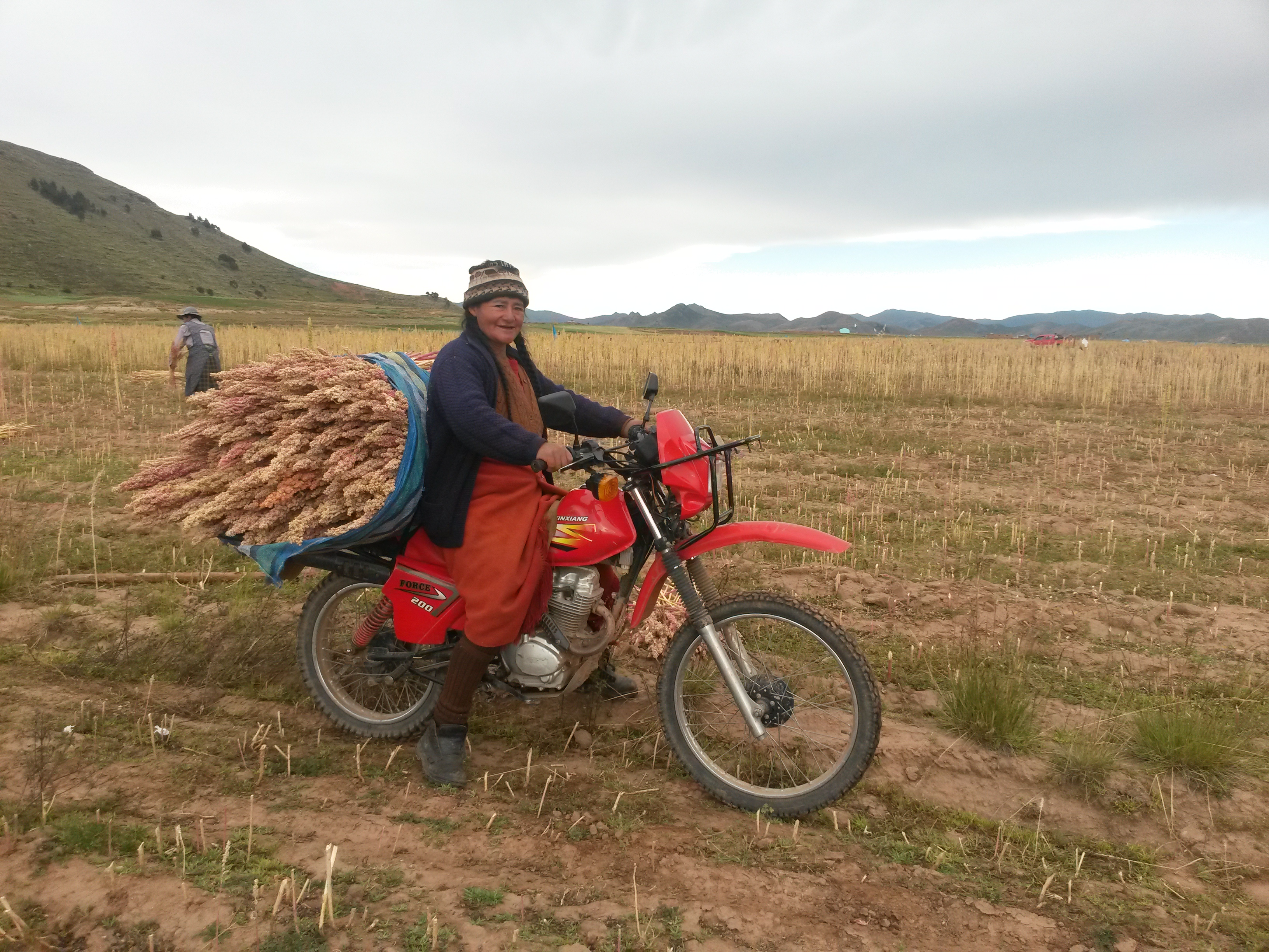 A quinoa producer transporting her crops by motorbike