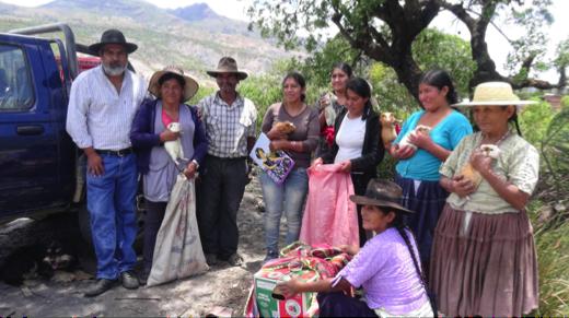 Entrega de conejos cuy en la comunidad Thagopampa