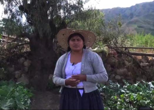 Rosse Mary Andia, del municipio de Pocona, muestra su huerto familiar donde siembra repollos, remolachas, brócoli y espinacas