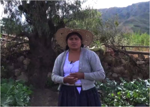 Rosse Mary Andia from Pocona Minicipality, shows established gardens to grow local cabbages, beetroots, broccoli and spinach