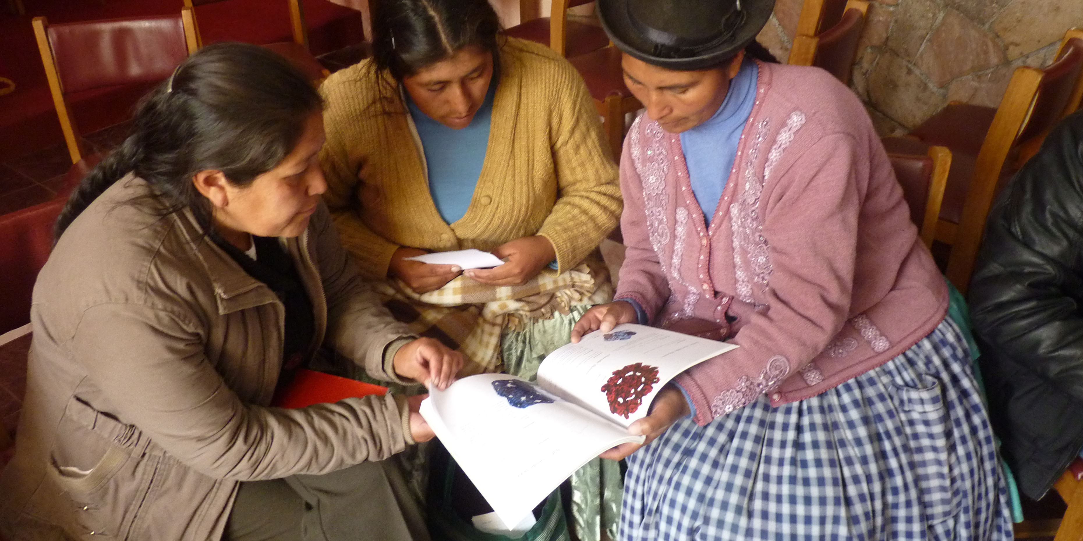 Small producers capacities in sustainable businesses were developed