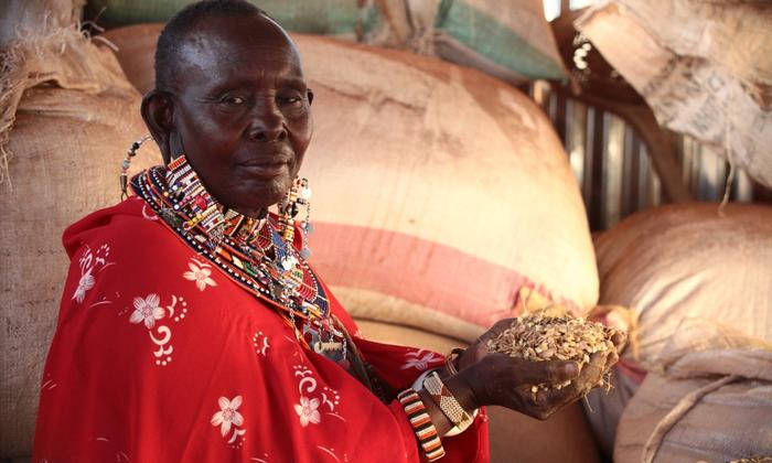 Africa with its vast natural resources and human capacity could be the way to increase food production by 50 percent by 2050. Photo: UNDP Kenya