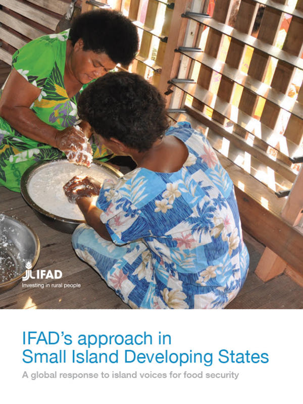 the vulnerabilities of small island developing states environmental sciences essay Small island developing states popularly known as sids is considered as a â special caseâ for sustainable development because of its ecological fragility and vulnerability.