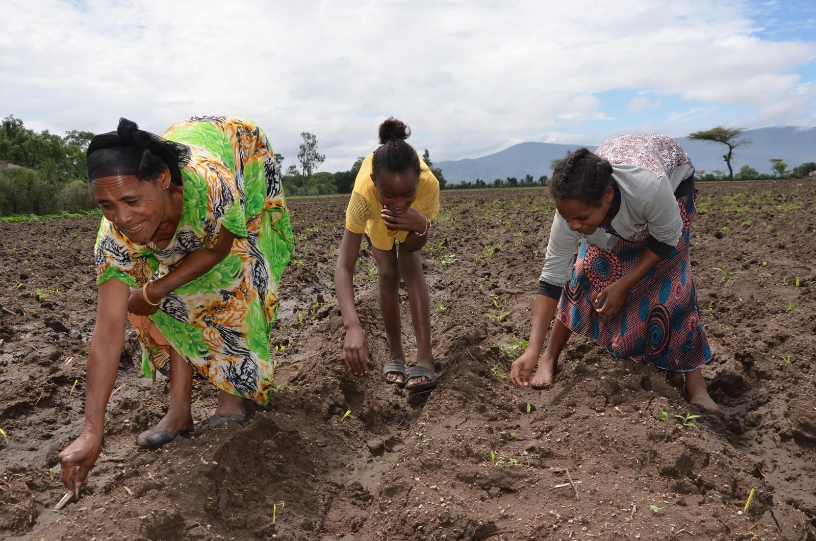 Kedija & her 2 daugthers by their maize farm(Photo-UN Women-Fikerte Abebe)